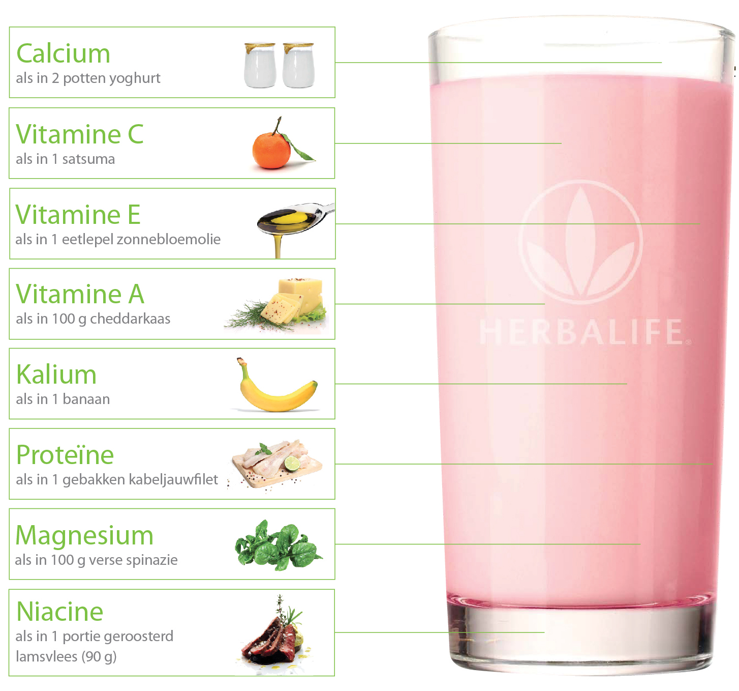 Formula 1 Shake Vitaminen en mineralen